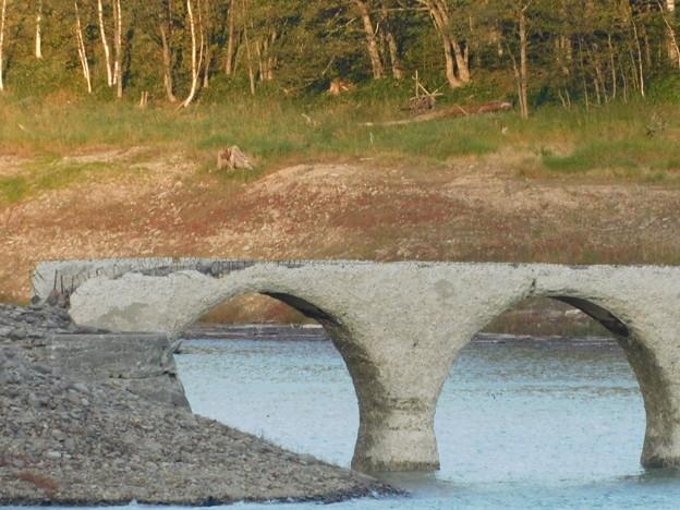 タウシュベツ橋梁2