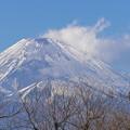 好天強風下の富士山-02