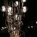 写真: 浅茅ヶ原(あさじがおか):奈良燈火絵07