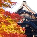 秋色高野山01