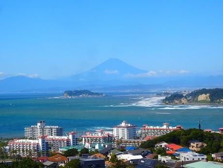 富士山~披露山公園から