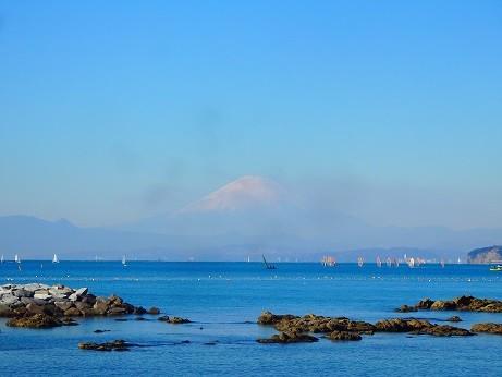 写真: 葉山からの富士山