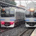 写真: 雪の横須賀線 北鎌倉
