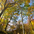 Photos: 201410251050SAT_OomineMisenn_01