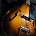写真: Guitar Kalamazoo KG-21