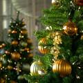 GRAND WISH CHRISTMAS 2014(3)
