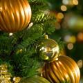 GRAND WISH CHRISTMAS 2014(4)