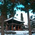 永澤寺にて(5)