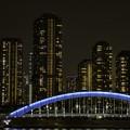 写真: 永代橋 (2)