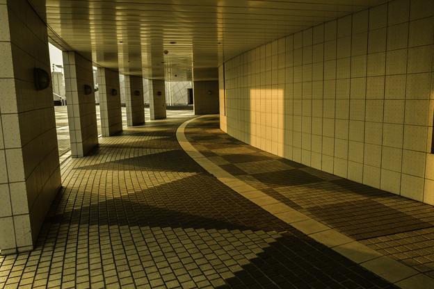 写真: 回廊