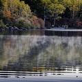 写真: 朝の白駒の池