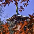 本土寺にて