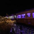 写真: イルミ電車