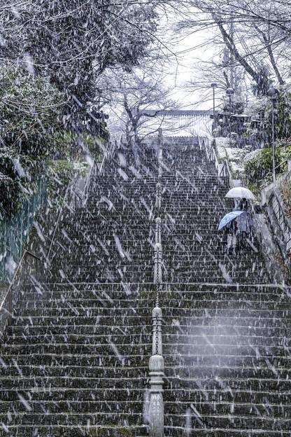 雪の本門寺 (4)