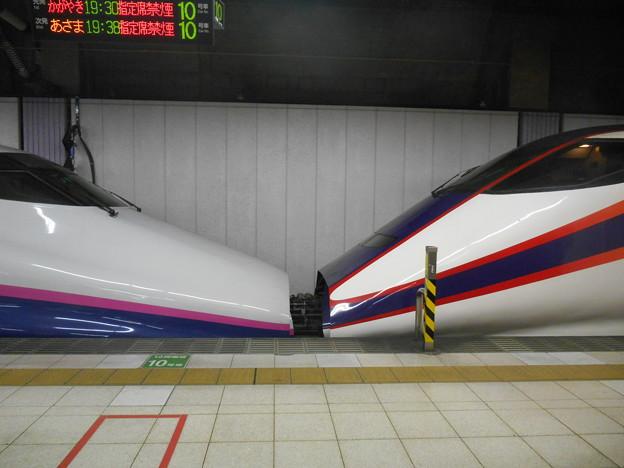 DSCN5398