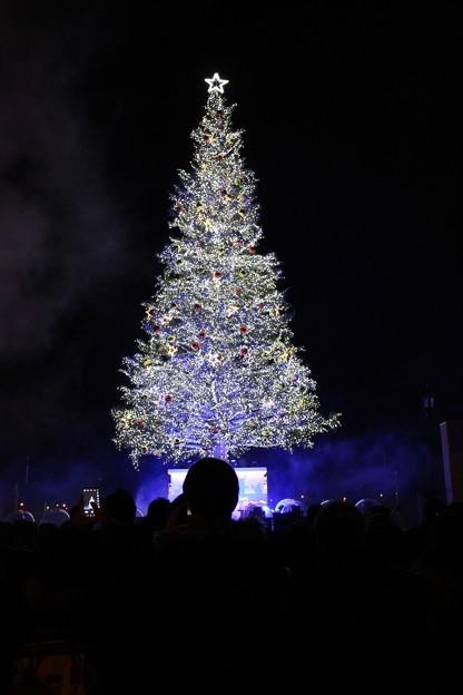 第20回 はこだてクリスマスファンタジー (1)