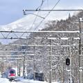 写真: 駒ヶ岳のふもと