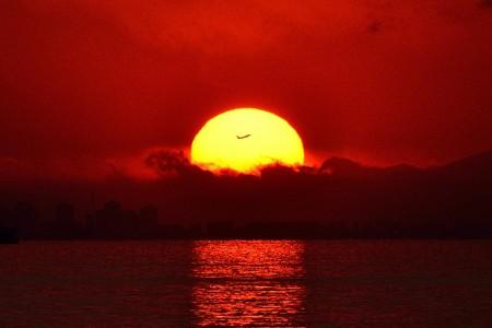 夕日をフライト