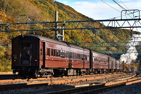 C61 20+旧型客車臨時快速SLレトロみなかみ号
