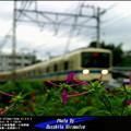 四季の鉄道・秋