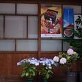 Photos: ゑびす家