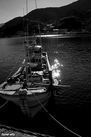 対馬にて・・イカ釣船