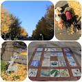 Photos: 日本大通りからスタート