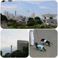Photos: 山下公園をお散歩