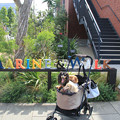 Photos: MARINE&WALKでパチリ
