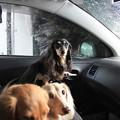 Photos: 洗車中
