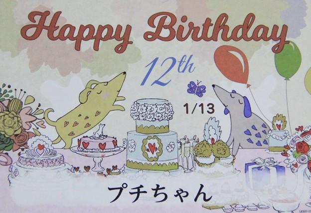 1月13日で12歳になりました