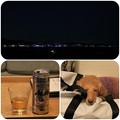 写真: 夜景を眺めながら
