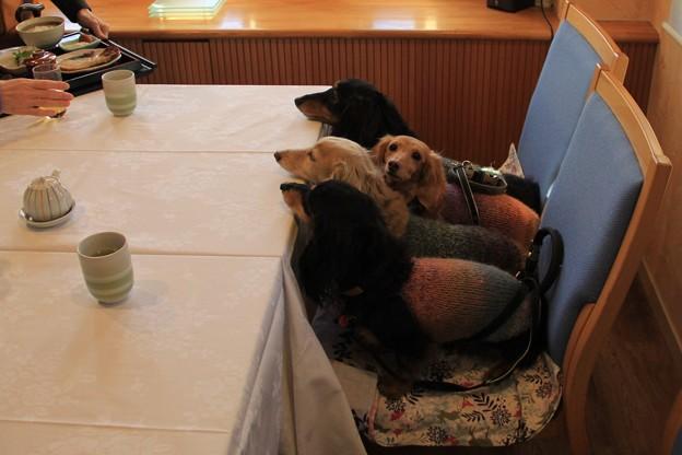 レストランで朝ごはん