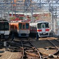 写真: オール阪神