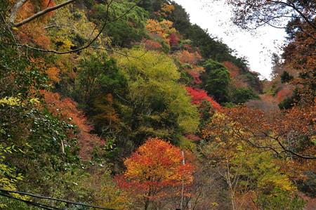 赤目渓谷の紅葉