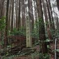 写真: 花山西塚古墳