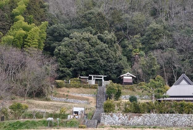 坂合黒彦皇子墓