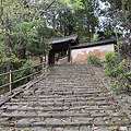 写真: 風情ある知足院の参道石段