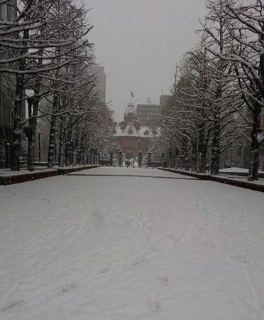 すっかり雪景色☆