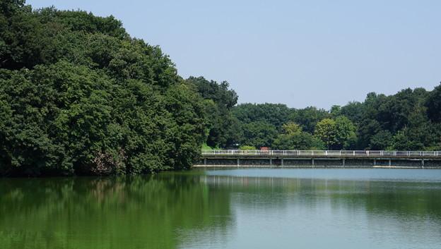 国営武蔵丘陵森林公園1