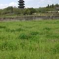 塔のある風景