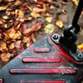 秋のブランコ