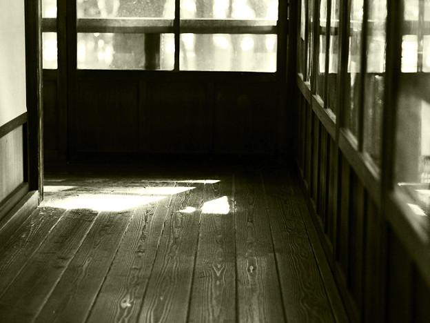 陽の射す廊下