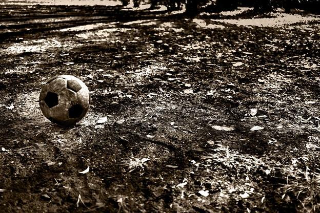 土色のボール