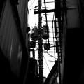 Photos: 軒間の空