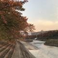 20171102 桜堤公園の紅葉