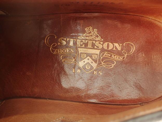 Stetson Overlay Plug