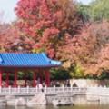 大仙公園日本庭園(2)