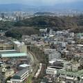 Photos: 仁徳天皇陵と特急こうや号