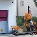 写真: 神戸北野坂